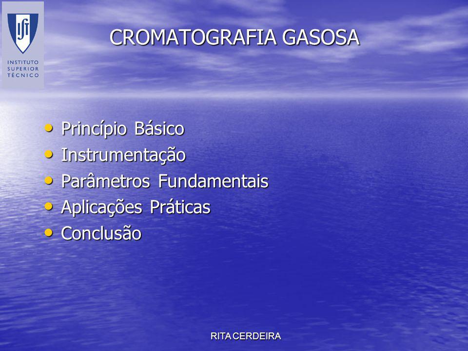 CROMATOGRAFIA GASOSA Princípio Básico Instrumentação