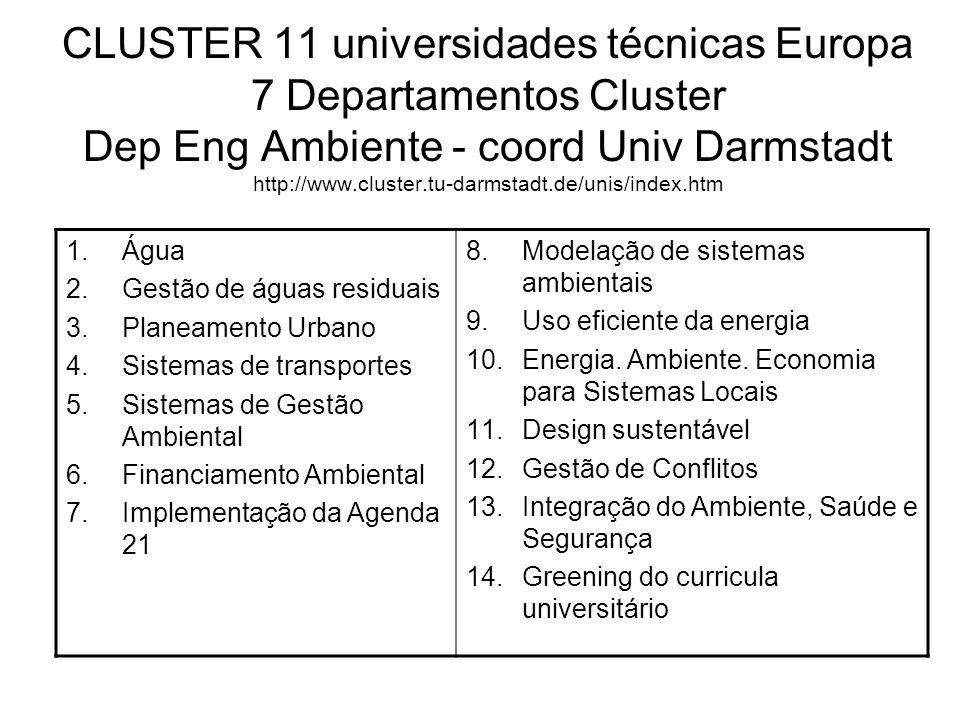 CLUSTER 11 universidades técnicas Europa 7 Departamentos Cluster Dep Eng Ambiente - coord Univ Darmstadt http://www.cluster.tu-darmstadt.de/unis/index.htm