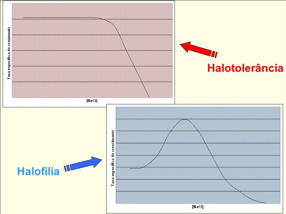 Halotolerância Halofilia