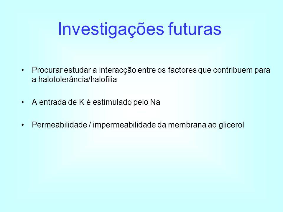 Investigações futuras
