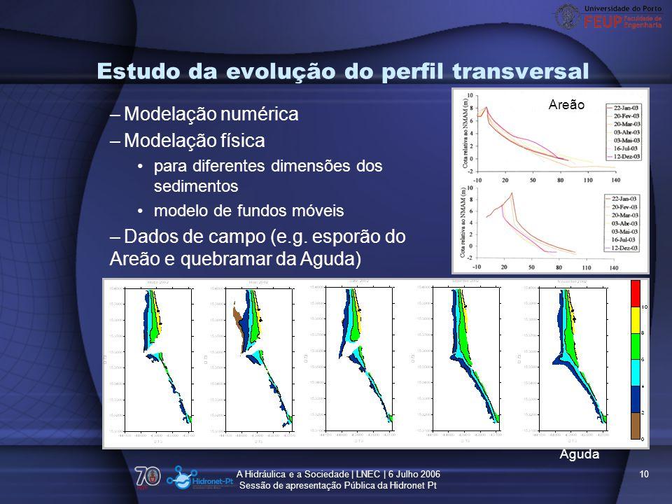 Estudo da evolução do perfil transversal