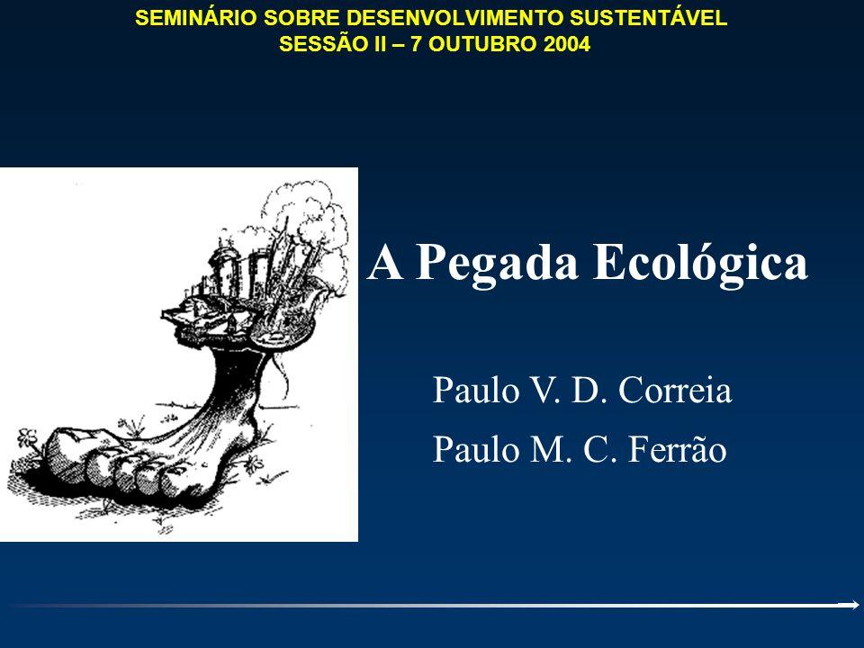 SEMINÁRIO SOBRE DESENVOLVIMENTO SUSTENTÁVEL SESSÃO II – 7 OUTUBRO 2004