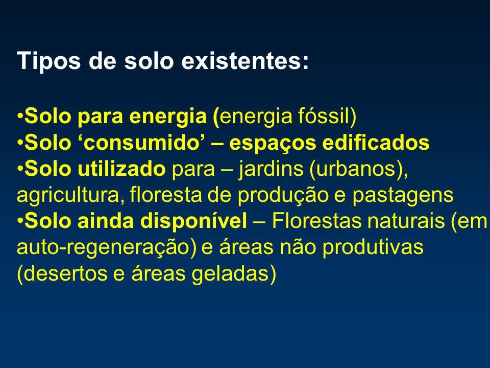 Tipos de solo existentes: