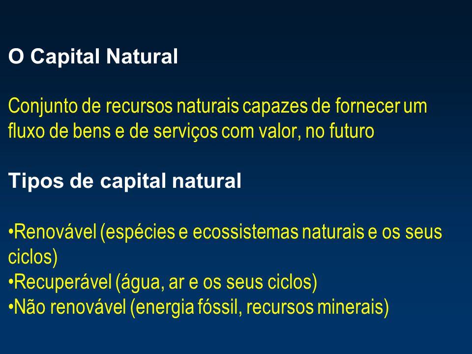 O Capital Natural Conjunto de recursos naturais capazes de fornecer um fluxo de bens e de serviços com valor, no futuro.