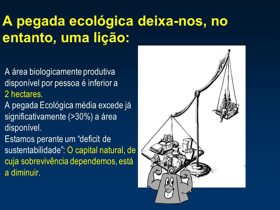 A pegada ecológica deixa-nos, no entanto, uma lição: