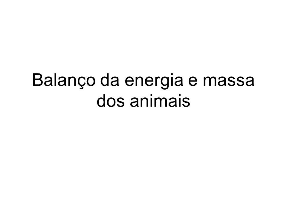 Balanço da energia e massa dos animais