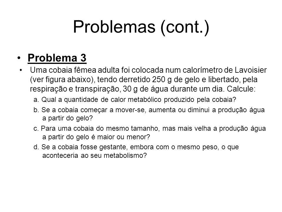 Problemas (cont.) Problema 3