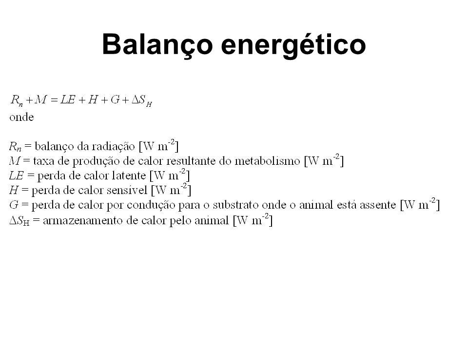 Balanço energético