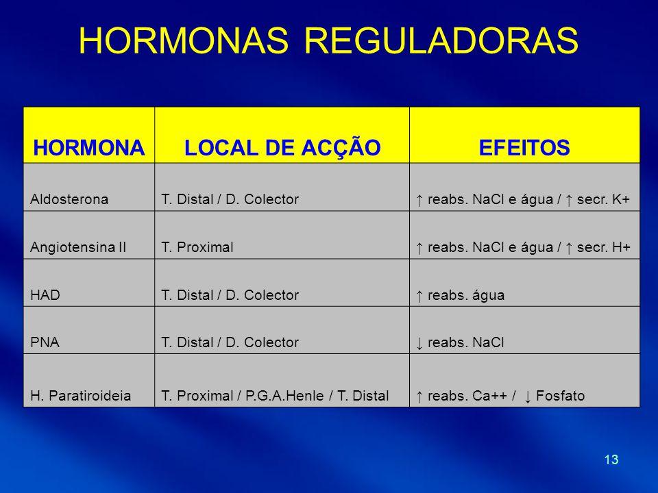 HORMONAS REGULADORAS HORMONA LOCAL DE ACÇÃO EFEITOS Aldosterona