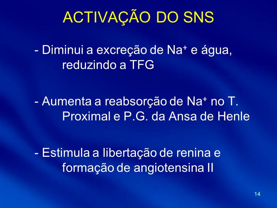 ACTIVAÇÃO DO SNS Diminui a excreção de Na+ e água, reduzindo a TFG