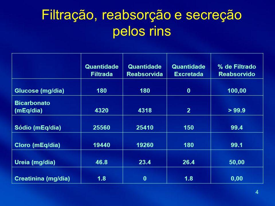 Filtração, reabsorção e secreção pelos rins