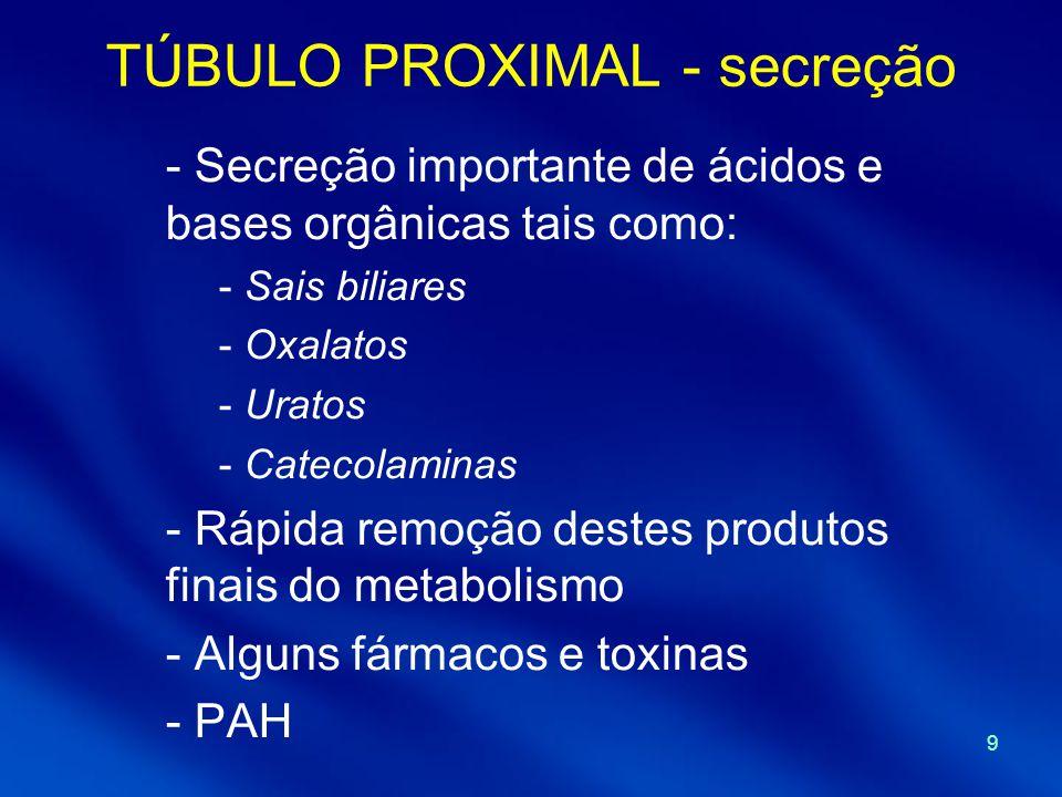 TÚBULO PROXIMAL - secreção
