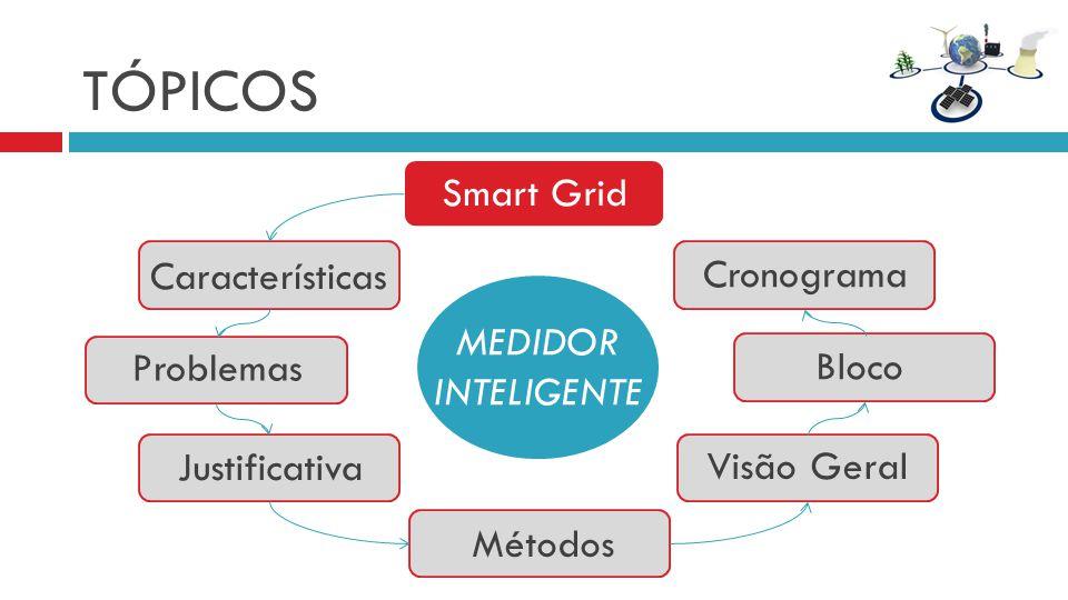 TÓPICOS Smart Grid Características Cronograma MEDIDOR INTELIGENTE