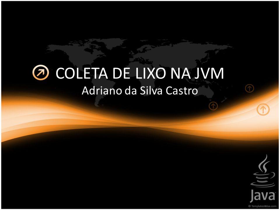 Adriano da Silva Castro