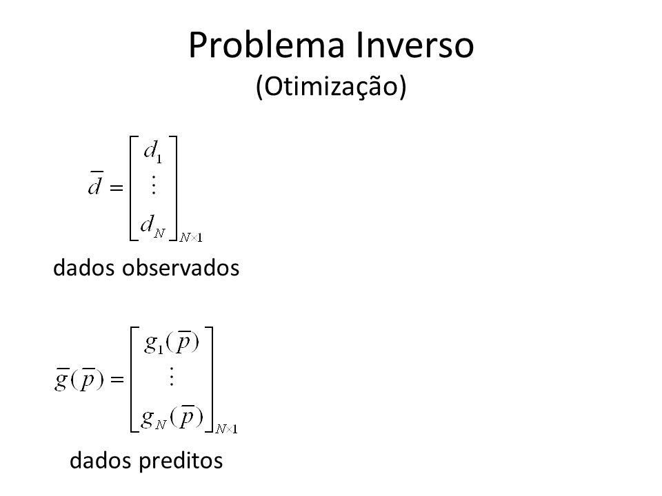Problema Inverso (Otimização)
