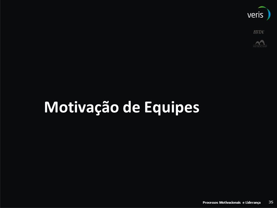 Motivação de Equipes Processos Motivacionais e Liderança