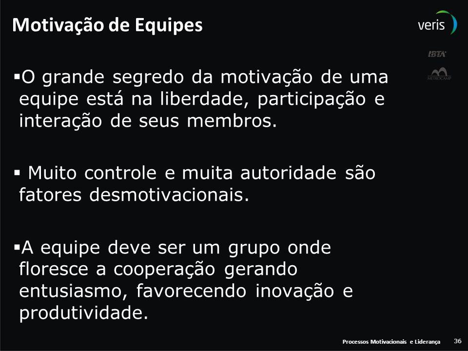 Motivação de Equipes O grande segredo da motivação de uma equipe está na liberdade, participação e interação de seus membros.