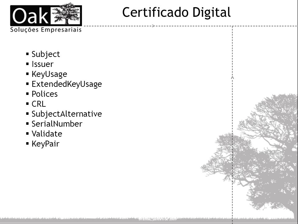 Certificado Digital Subject Issuer KeyUsage ExtendedKeyUsage Polices