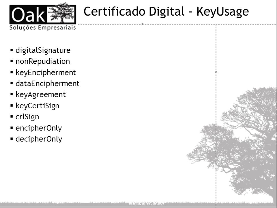 Certificado Digital - KeyUsage