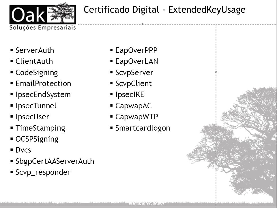Certificado Digital - ExtendedKeyUsage