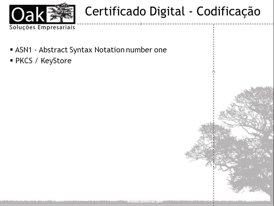 Certificado Digital - Codificação