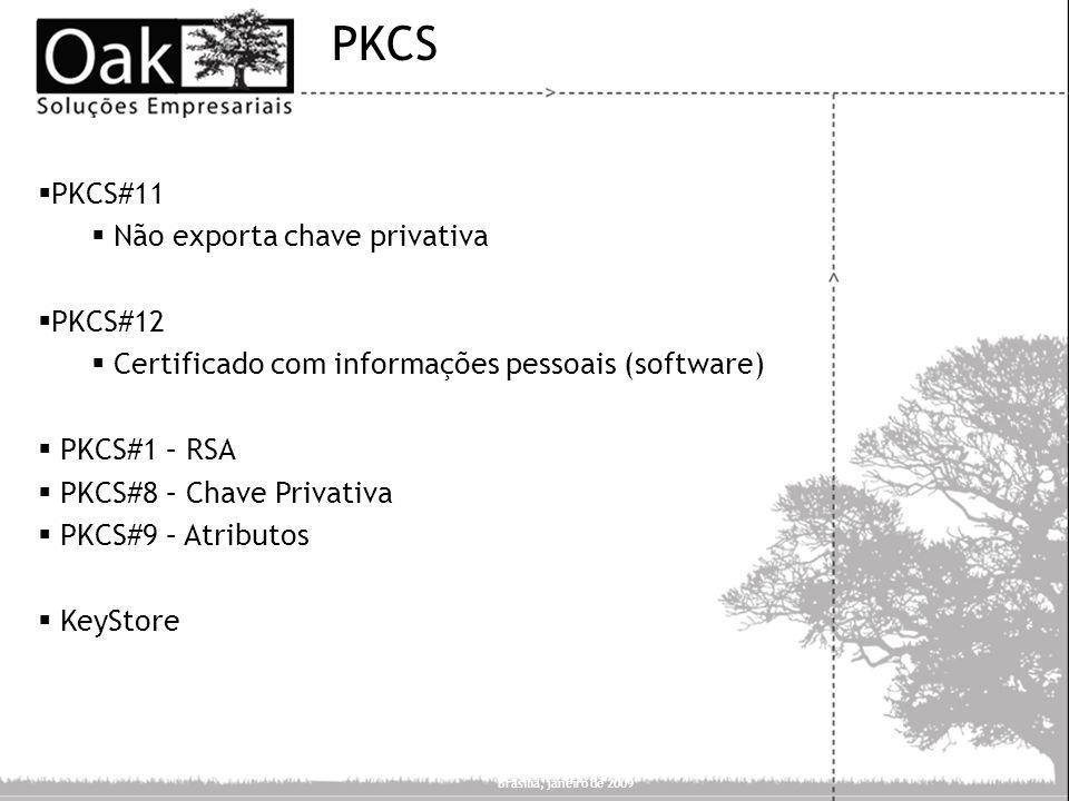 PKCS PKCS#11 Não exporta chave privativa PKCS#12