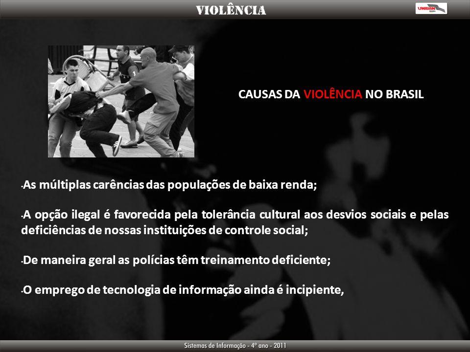 CAUSAS DA VIOLÊNCIA NO BRASIL