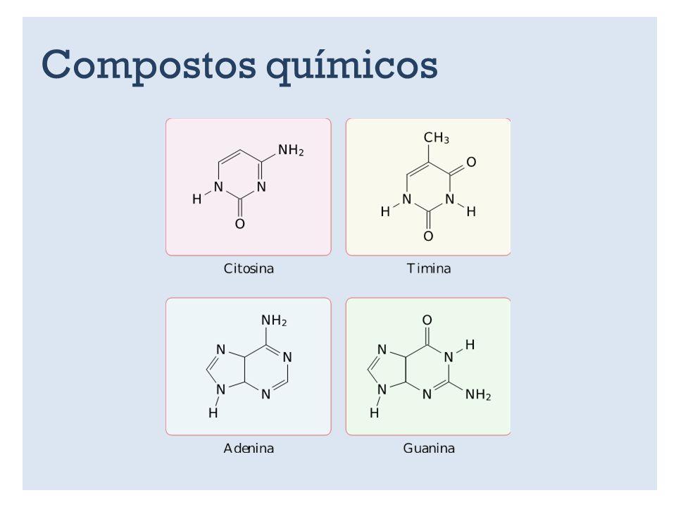 Compostos químicos