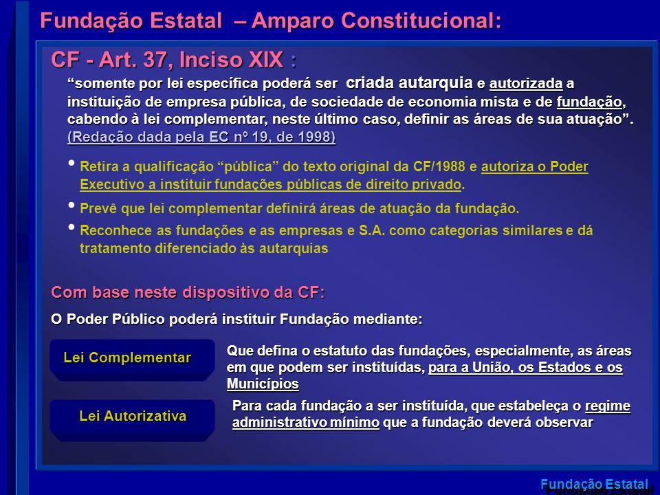 O Poder Público poderá instituir Fundação mediante: