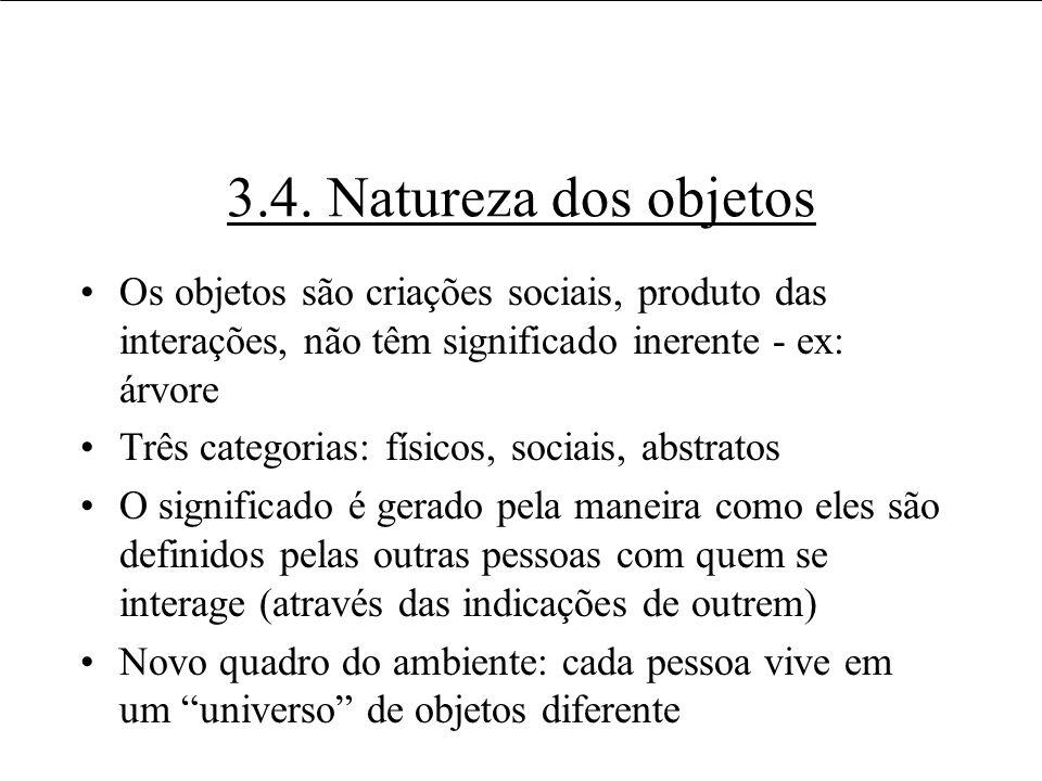 3.4. Natureza dos objetos Os objetos são criações sociais, produto das interações, não têm significado inerente - ex: árvore.