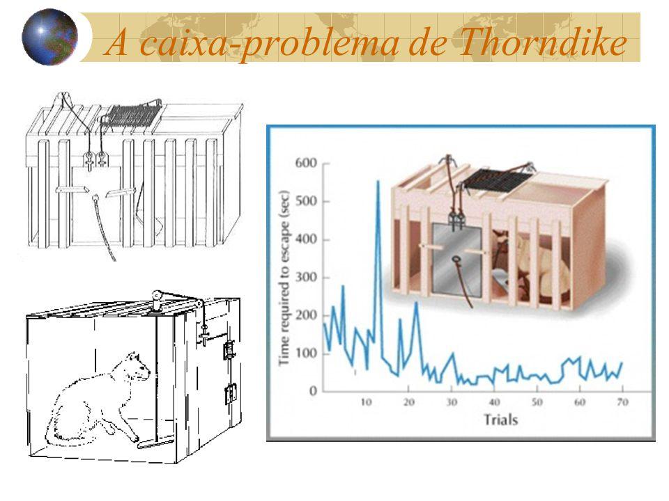 A caixa-problema de Thorndike