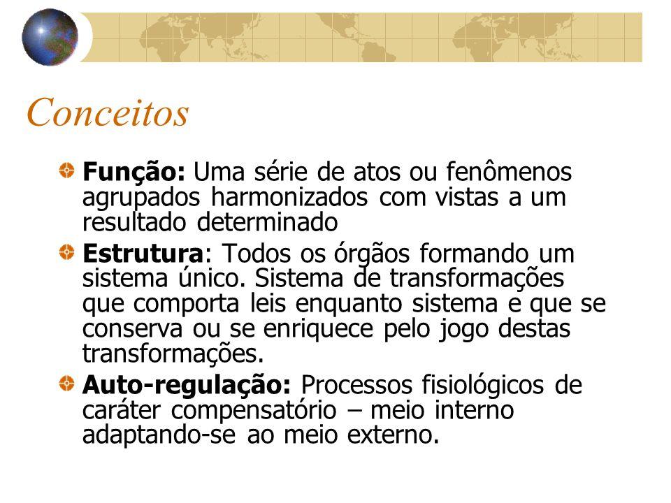 Conceitos Função: Uma série de atos ou fenômenos agrupados harmonizados com vistas a um resultado determinado.