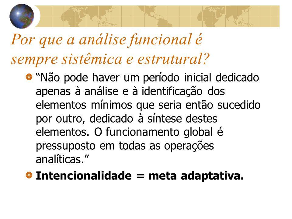 Por que a análise funcional é sempre sistêmica e estrutural