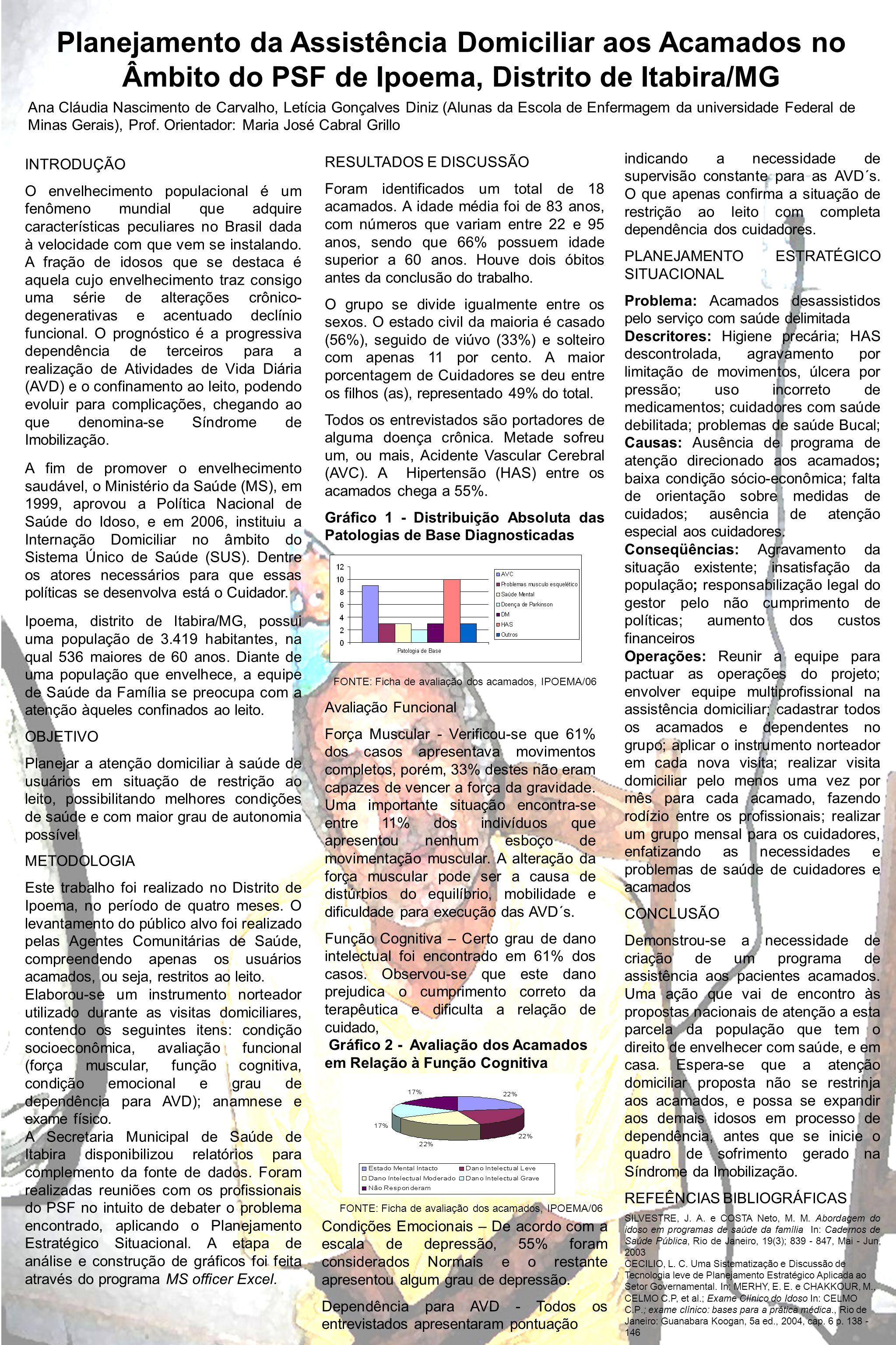 Planejamento da Assistência Domiciliar aos Acamados no Âmbito do PSF de Ipoema, Distrito de Itabira/MG