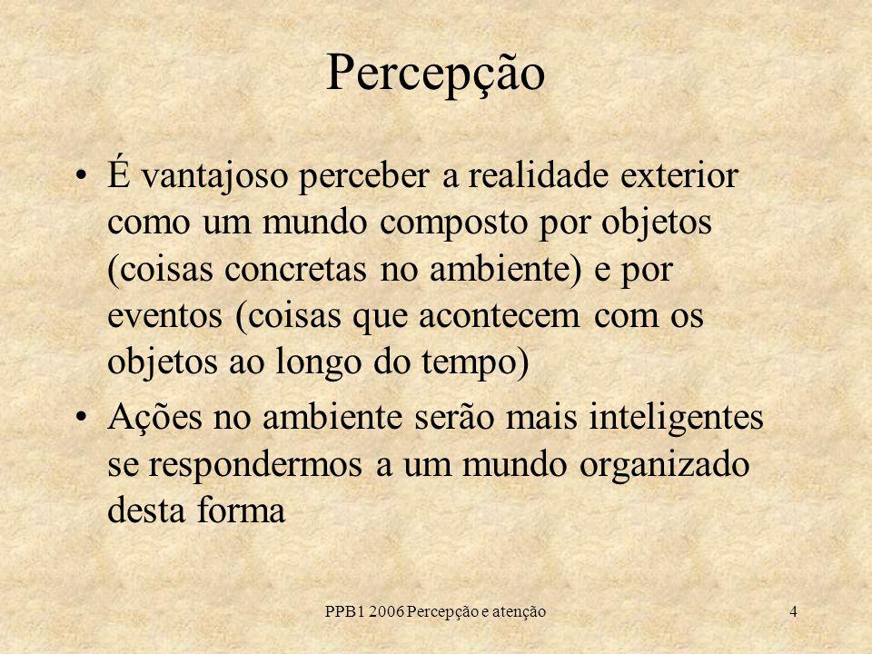 PPB1 2006 Percepção e atenção