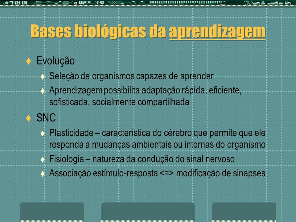 Bases biológicas da aprendizagem