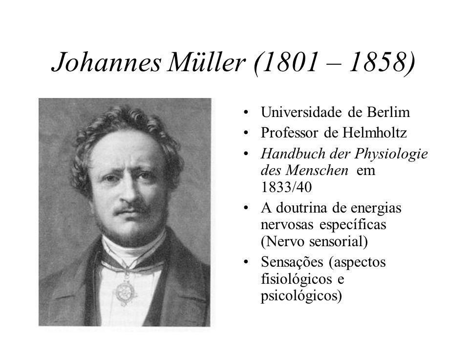 Johannes Müller (1801 – 1858) Universidade de Berlim