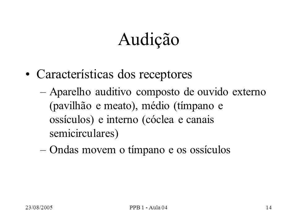 Audição Características dos receptores