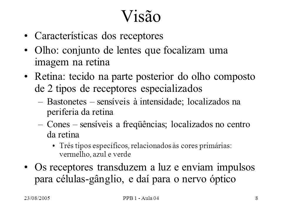 Visão Características dos receptores