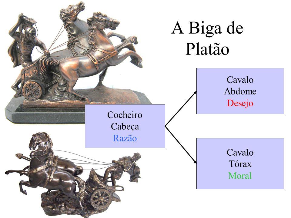 A Biga de Platão Cavalo Abdome Desejo Cocheiro Cabeça Razão Cavalo