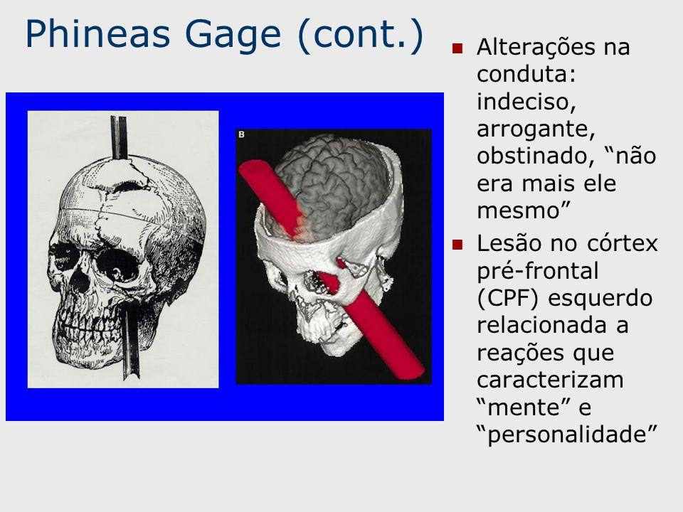 Phineas Gage (cont.) Alterações na conduta: indeciso, arrogante, obstinado, não era mais ele mesmo