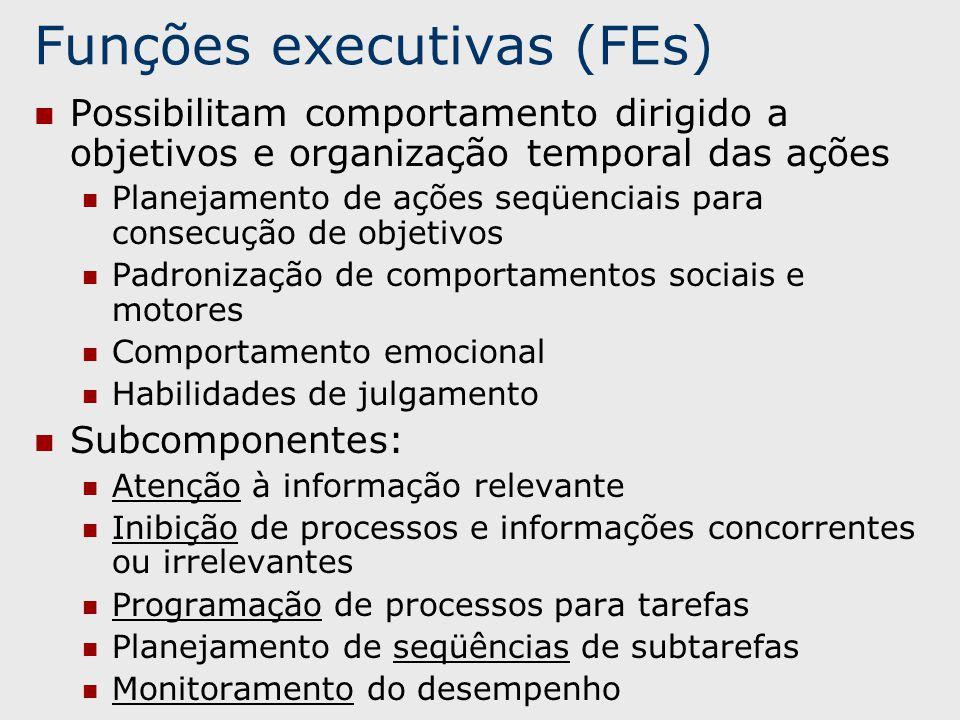 Funções executivas (FEs)