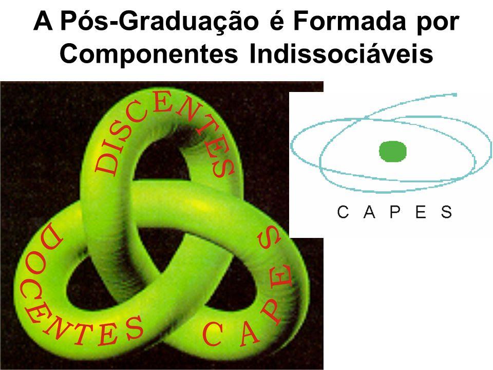 A Pós-Graduação é Formada por Componentes Indissociáveis