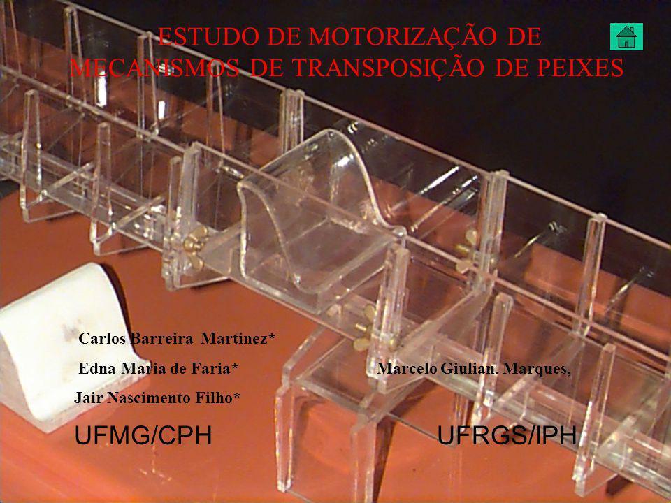 ESTUDO DE MOTORIZAÇÃO DE MECANISMOS DE TRANSPOSIÇÃO DE PEIXES