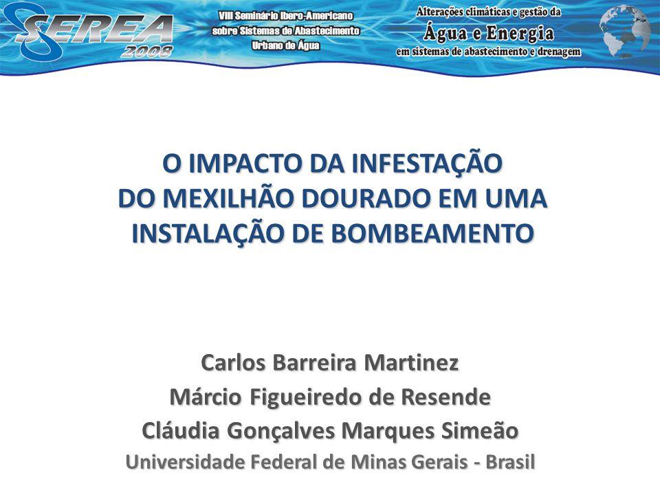 O IMPACTO DA INFESTAÇÃO DO MEXILHÃO DOURADO EM UMA INSTALAÇÃO DE BOMBEAMENTO