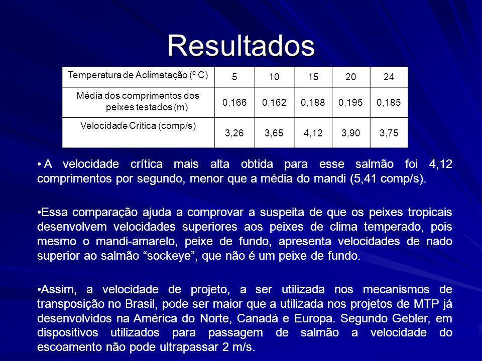 Resultados Temperatura de Aclimatação (º C) 5. 10. 15. 20. 24. Média dos comprimentos dos peixes testados (m)