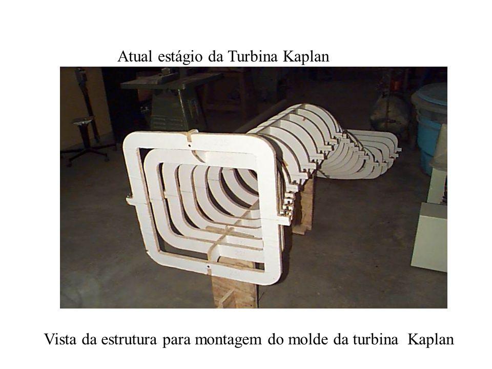 Atual estágio da Turbina Kaplan