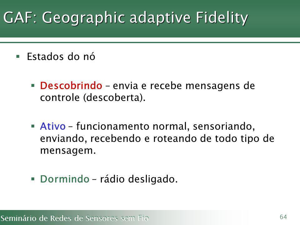 GAF: Geographic adaptive Fidelity