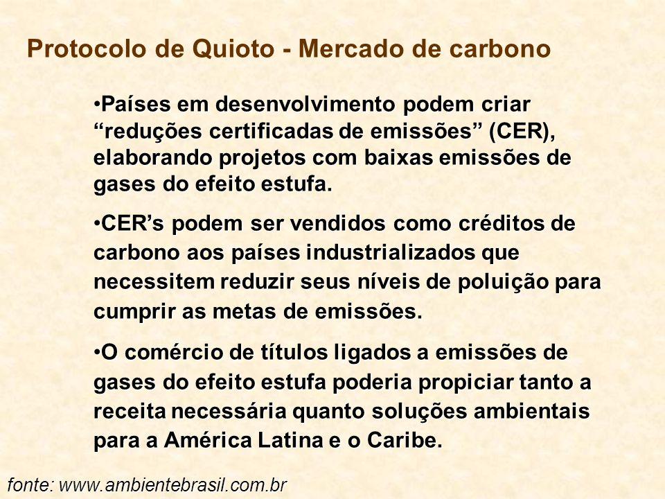 Protocolo de Quioto - Mercado de carbono