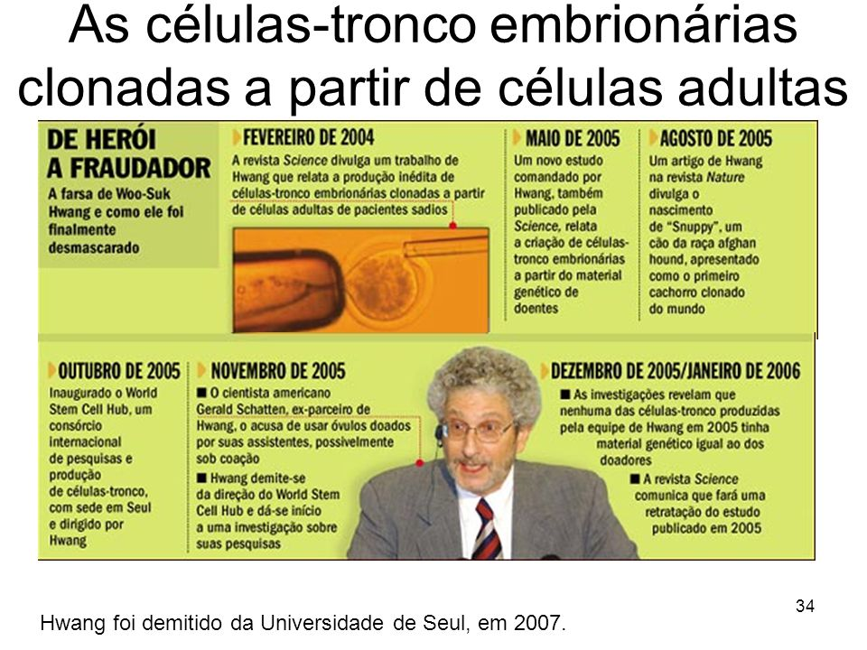 As células-tronco embrionárias clonadas a partir de células adultas